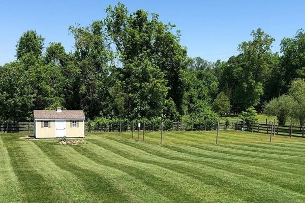 A very large back yard that has been recently mowed by Susquehanna Lawn Care. The grass is very green and there are mowing stripes running through the grass.