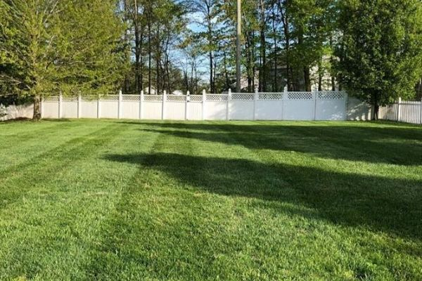 A fenced in back yard that has been serviced by Susquehanna Lawn Care. The grass has been mowed and all clippings and debris have been cleaned up.