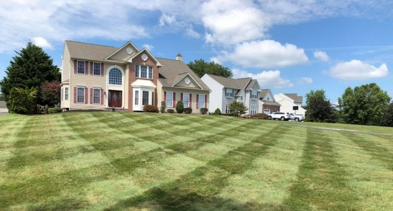 Recently mowed lawn in Elkton, MD.